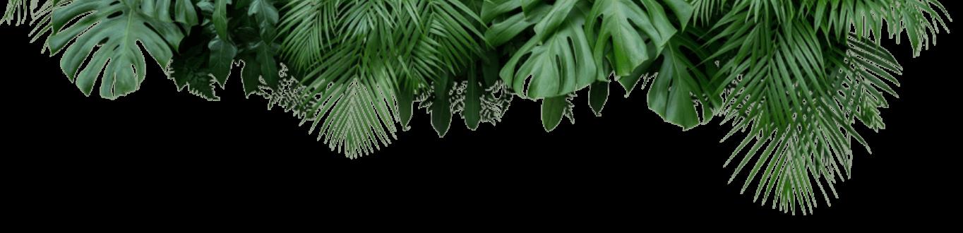 Bixahuman Plants Deco Bot