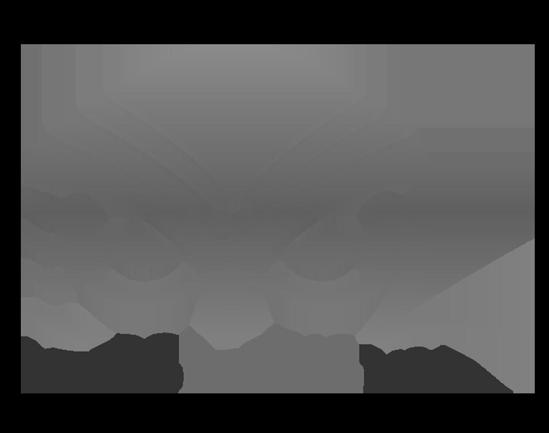Bixahuman Metro Latino USA