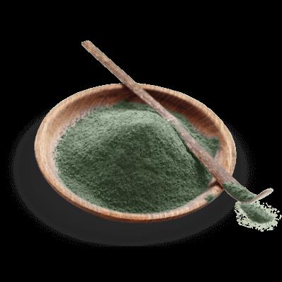 Olive Leaves Powder